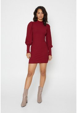 Berry Extreme Sleeve High Neck Tube Dress